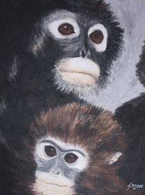 Affen von Sabrina Hennig