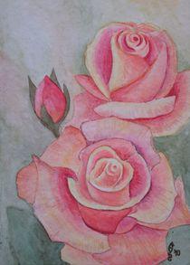 Rosen by Sabrina Hennig