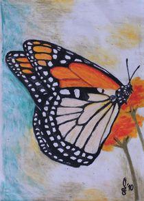 Monarchfalter von Sabrina Hennig