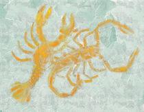 Krebs Skorpion von Frank Siekmann