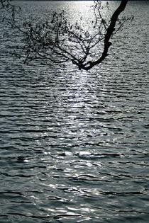 Schwarzes Wasser von Maria Reichenauer
