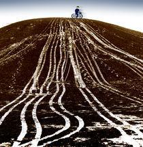 Der blaue Radfahrer by Maria Reichenauer