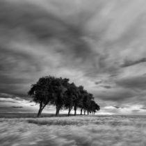 Wolken und Wogen von Henrik Spranz