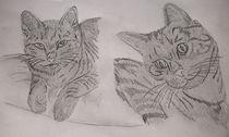 Katzenmotiv von Karin Frühbrodt-Biller