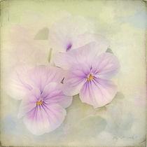 dreamy spring by larac