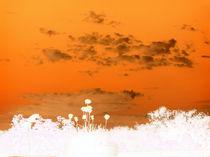 Der Himmel über Berlin in orange von Wolfgang Wende