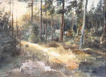Wald im Herbst von Matthias Kriesel