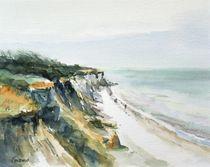 Steilküste bei Ahrenshoop von Matthias Kriesel