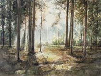 Wald von Matthias Kriesel