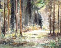 Wald - mal wieder von Matthias Kriesel