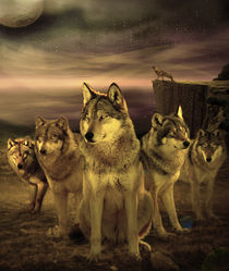Wolves at Night by Ahmed Nassar