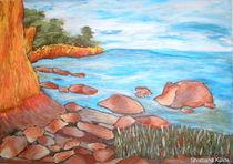 Shottland Küste by Sylvia W.