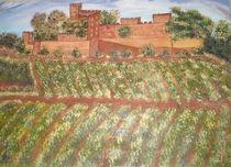 Weinberg in der Toscana by Sylvia W.
