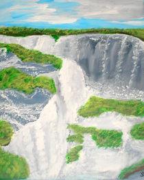 Iguazu Wasserfall in Brasilien by Sylvia W.