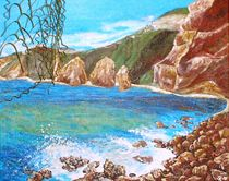 Madeira, Küste by Sylvia W.
