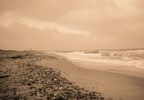 Strand Hohenfelde von Diana Reimansteiner