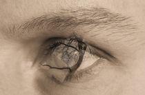 Im Auge von Diana Reimansteiner