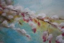Kirschblüten im April von Silke Macaluso
