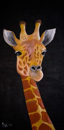 Neugierige Giraffe by isarts