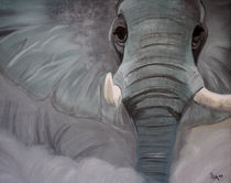 Elephant in the dust by isarts