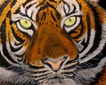 Tiger von isarts