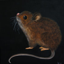 Little Mouse by isarts