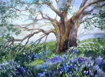 "Glockenblumen by Dorothea ""Elia"" Piper"