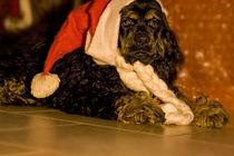 ich bin der Weihnachtsmann von lauras