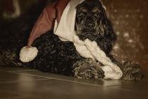 Der Weihnachtsmann von lauras