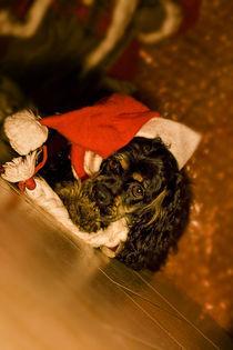 Weihnachten von lauras