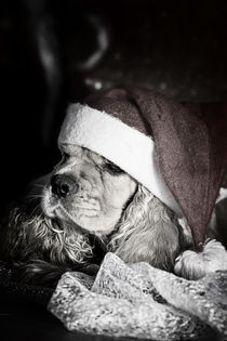 Weihnachtsmütze by lauras
