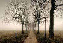 Tristesse by Michael S. Schwarzer