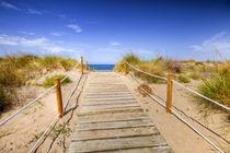 Weg zum Strand von Michael S. Schwarzer