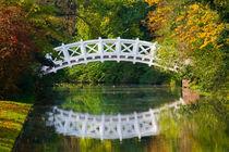 Herbstbrücke von Michael S. Schwarzer
