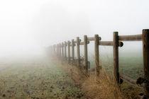 Nebel-Zaun...das Unbekannte! von Michael S. Schwarzer