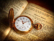 Zeit, Freiheit und Gesetze von Michael S. Schwarzer