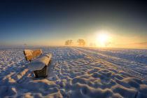 Kalt und Warm von Michael S. Schwarzer