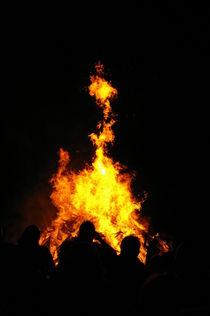 Fire von Harald Winter
