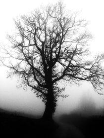 Nebel des Grauens von Eva-Maria Oeser