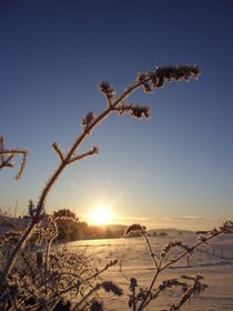 Sonnenaufgang von Eva-Maria Oeser