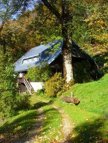 Haus im Hotzenwald von Eva-Maria Oeser