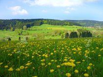blühende Landschaft von Eva-Maria Oeser