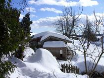 Winterstall von Eva-Maria Oeser