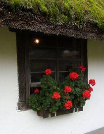 Bauernhof-Fenster von Eva-Maria Oeser