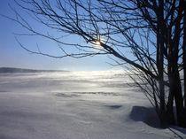 Wintersonne von Eva-Maria Oeser