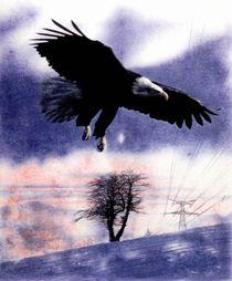 Eagle von Rüdiger Szonell