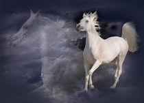 Dreamhorse von Diana Wolfraum