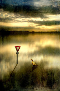 Cédez le passage (Lektion1-Umwelt, Lebensraum) by Mathias May