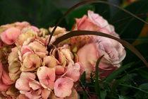 Rosarotes Geschenk von pichris