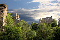 Klosterruine Oybin von Dan Kollmann